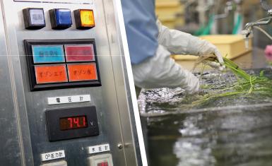 オゾン冷水処理